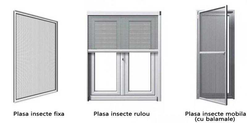 plase insecte